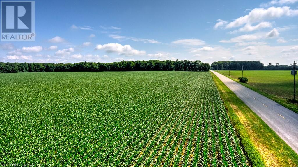 2830 59 Highway, Norfolk County, Ontario  N0E 1G0 - Photo 11 - 40135162