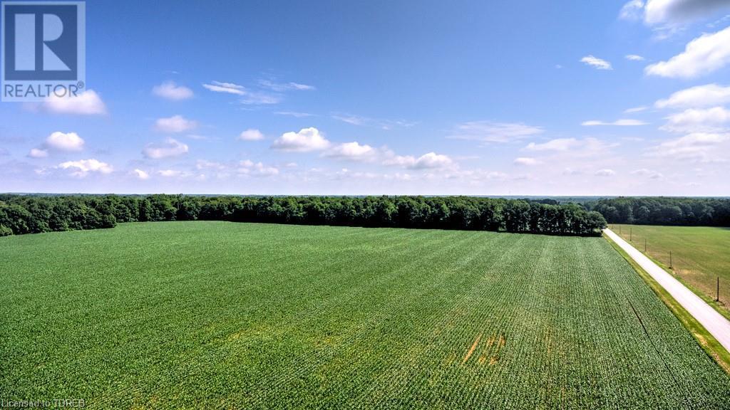 2830 59 Highway, Norfolk County, Ontario  N0E 1G0 - Photo 16 - 40135162